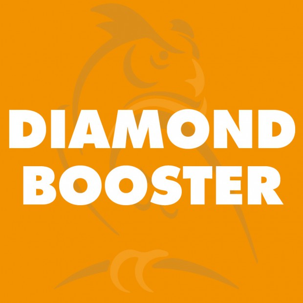 Diamond booster