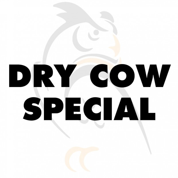 Dry cow Special