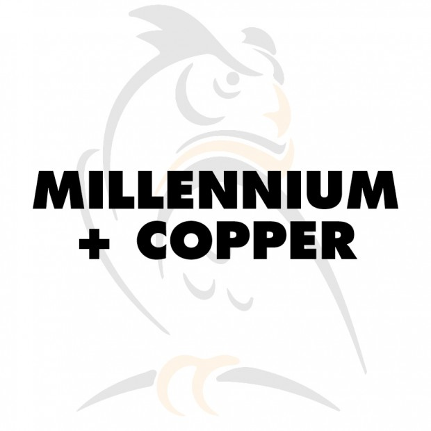 Millennium booster + copper